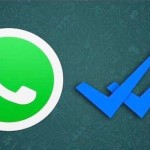 spunta blu whatsapp